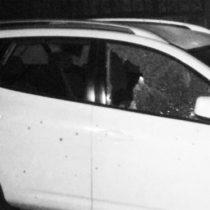 Ciudad Hidalgo: una fiera mostró su dentadura hecha de balas