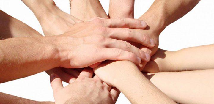 Cooperación o competencia entre individuos