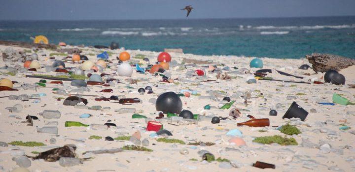 Los océanos acumulan siete millones de toneladas de basura marina al año