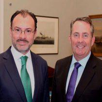 Fortalece el Canciller Videgaray vínculos políticos y comerciales de México con Reino Unido