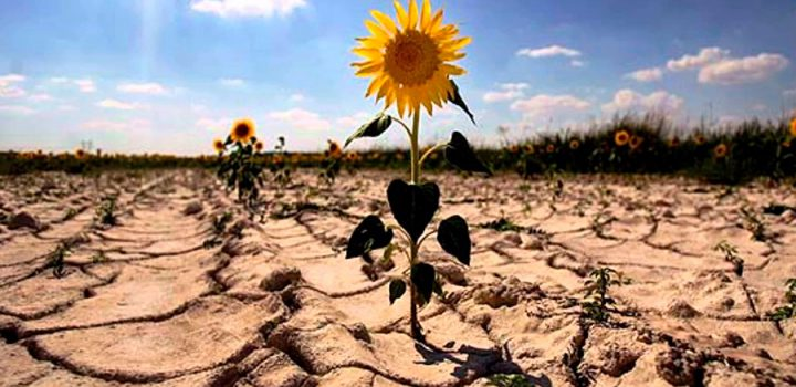 El deterioro ambiental, amenaza para la humanidad
