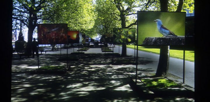 El sistema de museos virtuales de la UAM ofrece visibilidad global de la institución