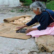 80 mil campesinos mexiquenses pobres en riesgo de hambruna