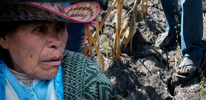 Cerca de 100 mil campesinos olvidados e ignorados por la Sagarpa