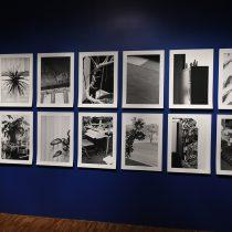 Obras finalistas del premio Prix Pictet se exhiben en el MAM