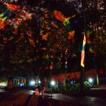 Anuncian Simposio Internacional Arte y Neurociencia: alquimias de los cruces de conocimiento