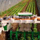 Automatización de la producción agrícola