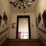 El 77, punto de encuentro para entusiastas del arte y la cultura