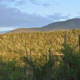 Científicos medioambientales son responsables de preservar ecosistemas únicos