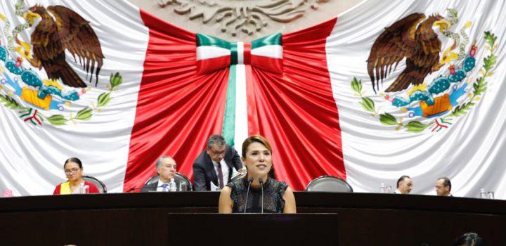 Saldo histórico del gobierno de EPN se llama desigualdad: Marina del Pilar Ávila