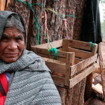 90 mil texcocanos con carencias en sus hogares: SEDESOL