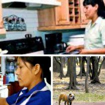 Necesario incluir a los trabajadores domésticos en la seguridad social