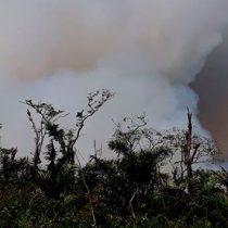 Terrible incendio consume bosque en Nicaragua