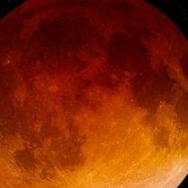Urge a la NASA regresar a la Luna y quedarse en ella
