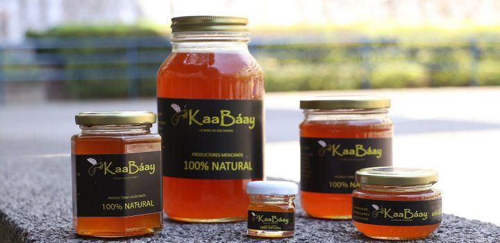 KaaBáay, proyecto que comercializa miel de abeja melipona, recibe  Premio UNITEC a Innovación Tecnológica para el Desarrollo Social