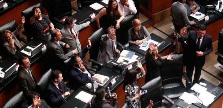 Senado 'palomea' a aspirantes a la CRE, pese a inexperiencia