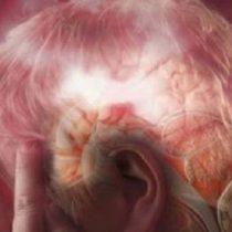 Enojarse beneficia al cerebro: Académico