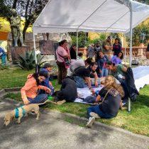 Tlalpan realiza Jornada de Bienestar Animal