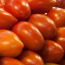 México solicita a EU dar solución a acuerdo de suspensión del tomate