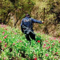 Corrupción en México frena el combate al narcotráfico: EU
