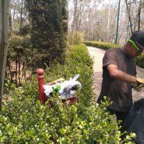 """Falso destrucción del parque """"El Ensueño"""" en Cuajimalpa"""