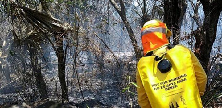 Suma incendio 5 días en Veracruz