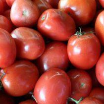Dan tomateros última propuesta a EU