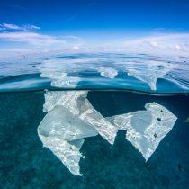 Halla plástico mayor inmersión submarina
