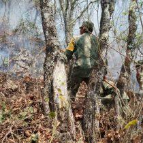 Aplican Plan DN-III-E en Querétaro por incendio forestal