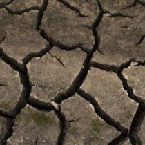 Experto de la ONU alerta sobre 'apartheid climático'