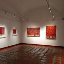 Brilla en la exposición Los Colores del Alma el rojo carmín  de la grana cochinilla