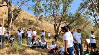 Ciudadanos reforestan cerro en Nayarit por iniciativa propia