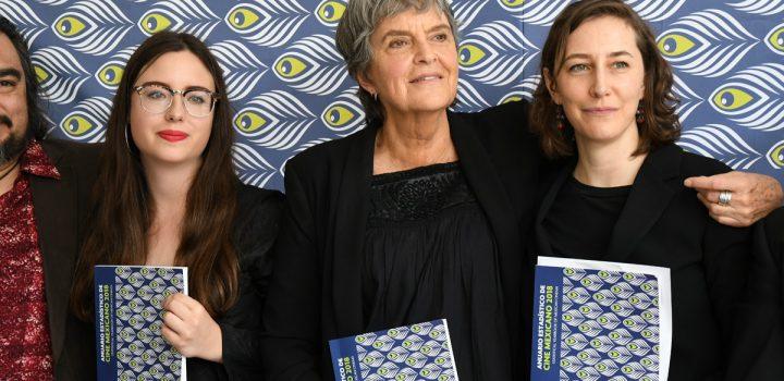 Imcine presenta Anuario estadístico de cine mexicano 2018 y  portal AnuarioCineMx