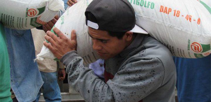 Quinientas familias de Malinalco beneficiadas con la gestión del fertilizante subsidiado