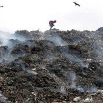 Pro Bosque de Chapultepec Invita a Combatir Contaminación