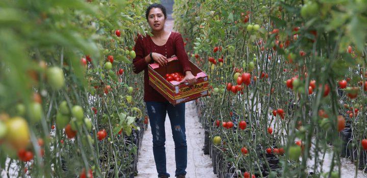 Falta reconocer la contribución femenina en la defensa de los recursos naturales