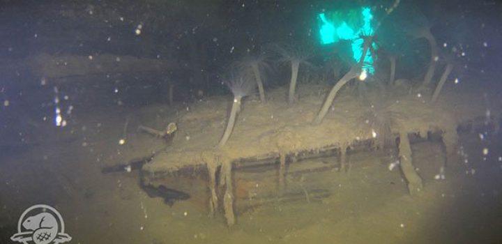 Revelan imágenes del HMS Terror, el barco 'caníbal' hundido hace 170 años