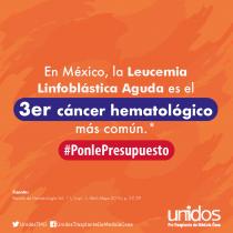 Urge presupuesto para Leucemia Linfoblástica Aguda: Unidos Asociación Pro Trasplante de Médula Ósea