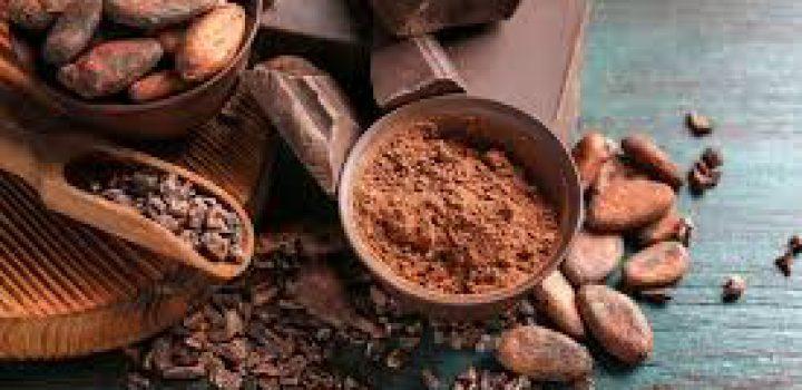 A festejar el cacao y el chocolate con dibujos, relatos y un recetario