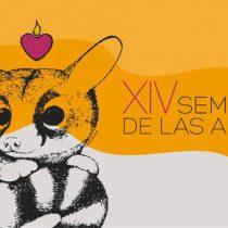 Llega a Morelos la 14 edición de la Semana de las Artes