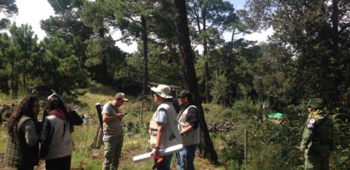 Tlalpan, PROFEPA y GN recuperan suelo de conservación