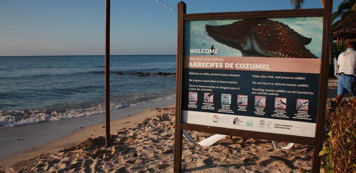 Acuerdo de colaboración entre UNESCO y Cozumel para cuidar más los arrecifes de coral