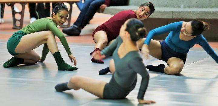 Inicia primer programa de danza contemporánea de unidad Cuajimalpa de UAM
