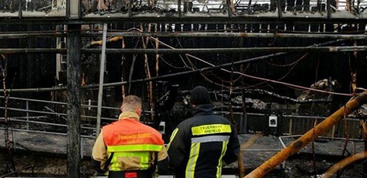 Mueren 30 animales por incendio en zoológico de Alemania