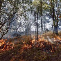 Negligencia de la CFE causa incendio y afecta a familias pobres en Hidalgo