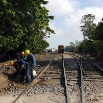 Pide CNDH parar labores no esenciales del Tren Maya