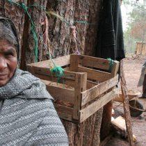 En Oaxaca hay contagios por Covid-19 en zonas indígenas