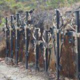 Antorcha advierte del peligro de nuevos crímenes contra Yosoñama