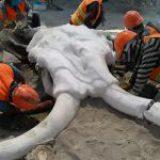 INAH comenzará estudio de yacimientos de mamuts en Santa Lucía y Tultepec II