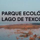 Parque Ecológico de Texcoco costará 17 mil mdp, otra megaobra de 4T